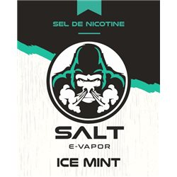 ICE Mint logo