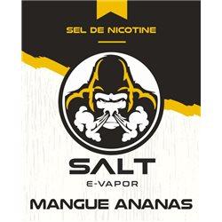Mangue Ananas logo