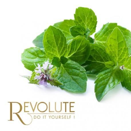 Arome concentre revolute saveur menthe